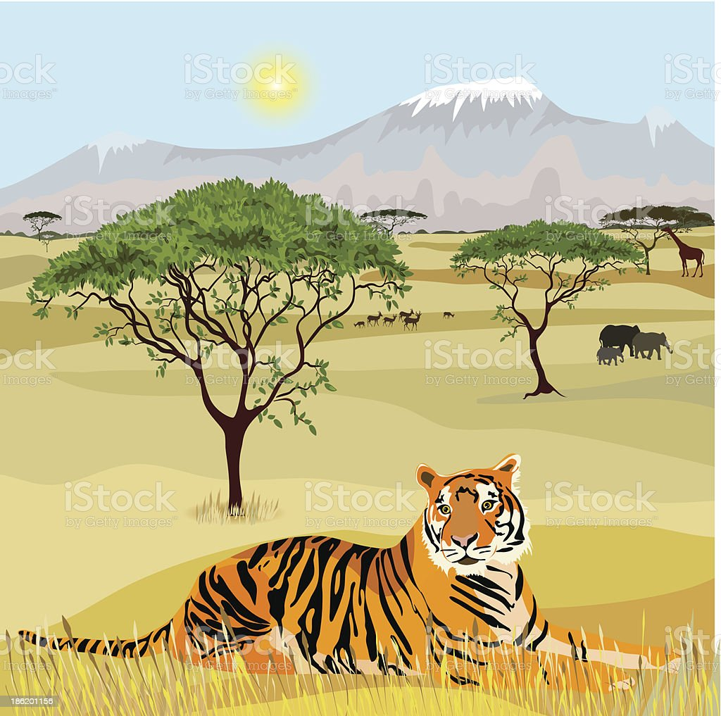 African Mountain idealistic landscape with tiger royalty-free stock vector art