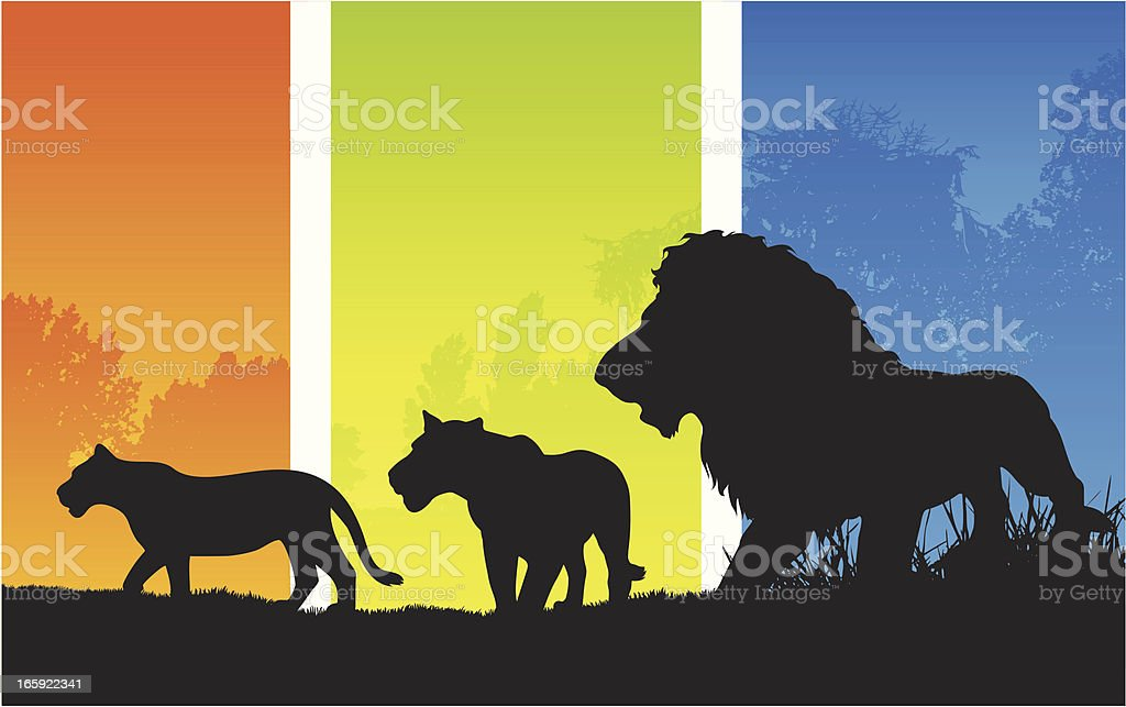 African pride of lions silhouette vector art illustration