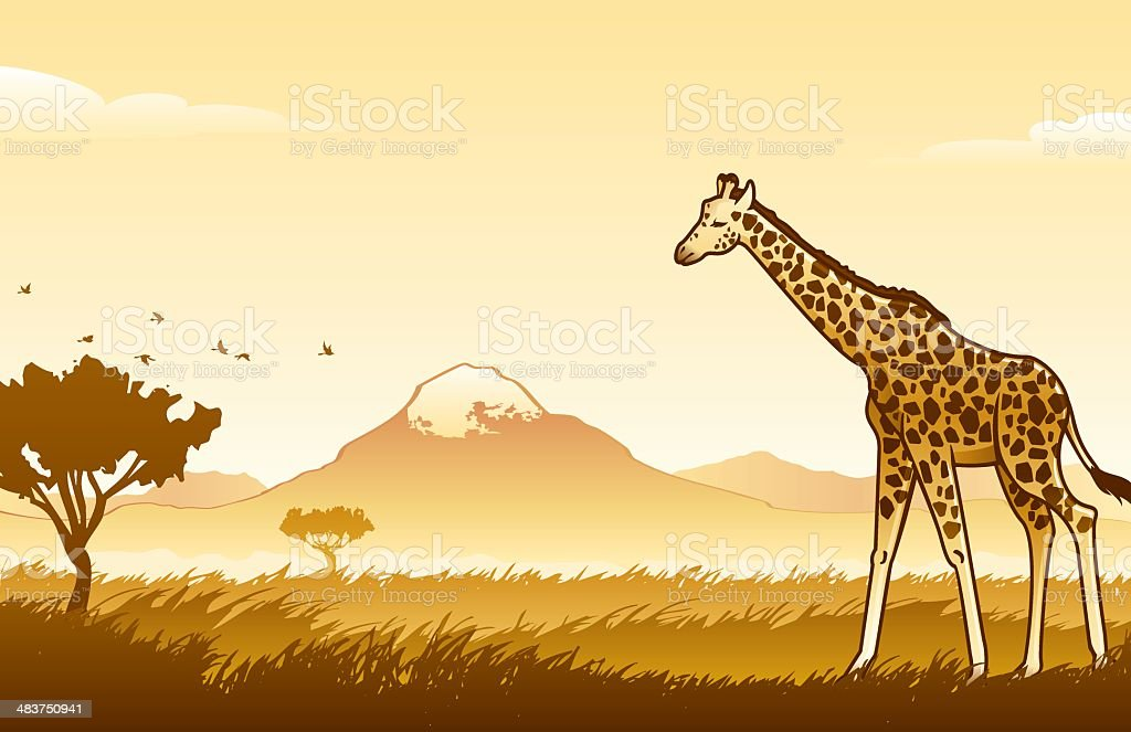 African Wilderness Scene vector art illustration