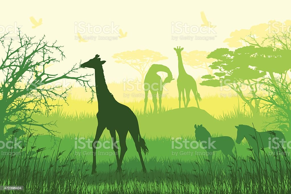 African wildlife and inhabitants of prairies vector art illustration