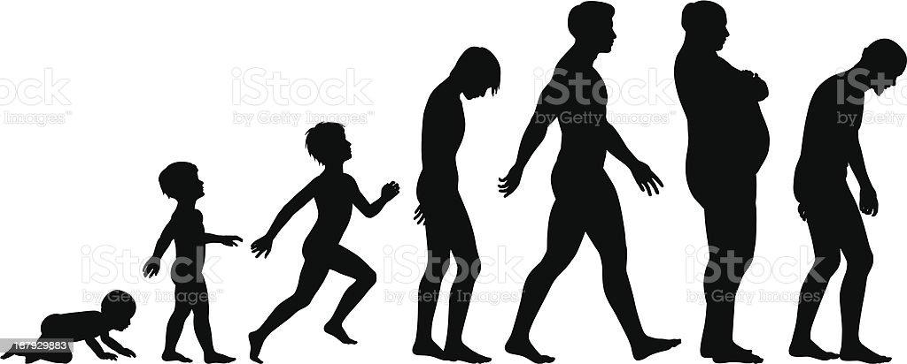 Ages of man vector art illustration