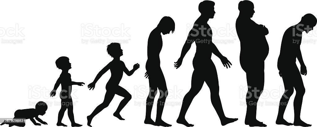 Ages of man vector art illustration