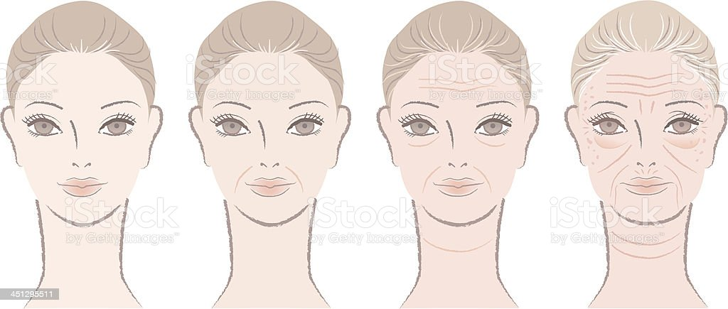 Aging process of beautiful woman portraits vector art illustration