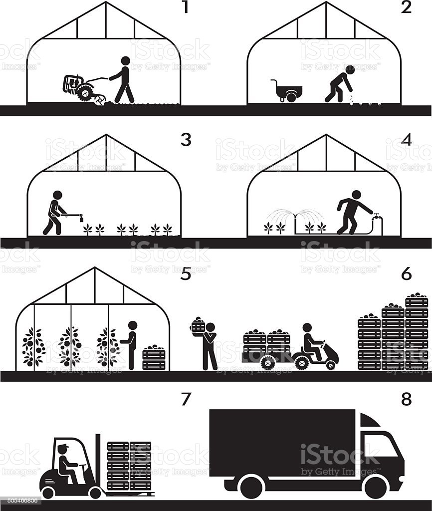 Agricultural process in greenhouse. vector art illustration