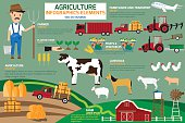 Agriculture infographics elements. vector illustration.