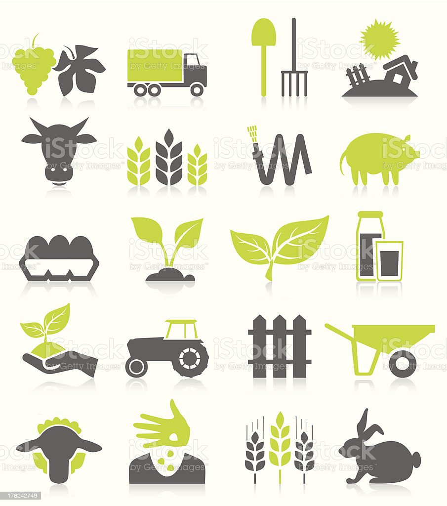 Agriculture vector art illustration