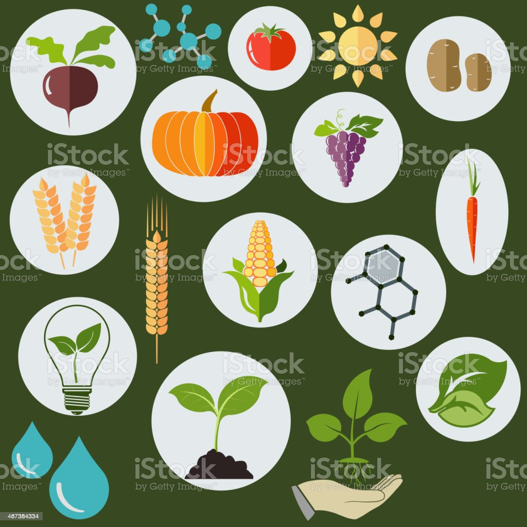 Agronomic  icons flat style - vector vector art illustration