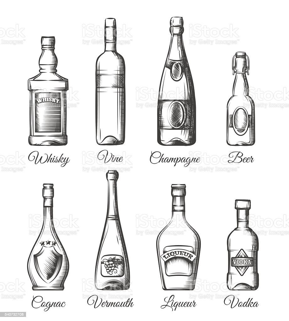 Alcohol bottles in hand drawn style vector art illustration