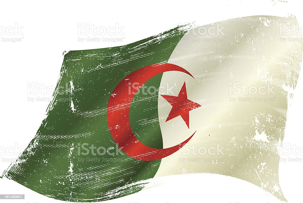 Algerian grunge flag vector art illustration