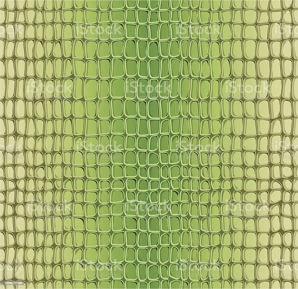 Alligator seamless pattern vector art illustration