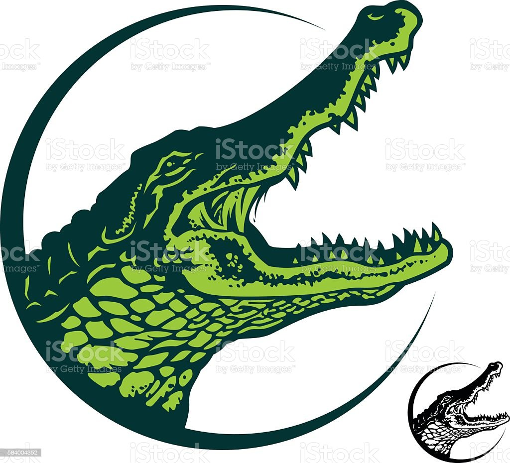 alligator vector art illustration