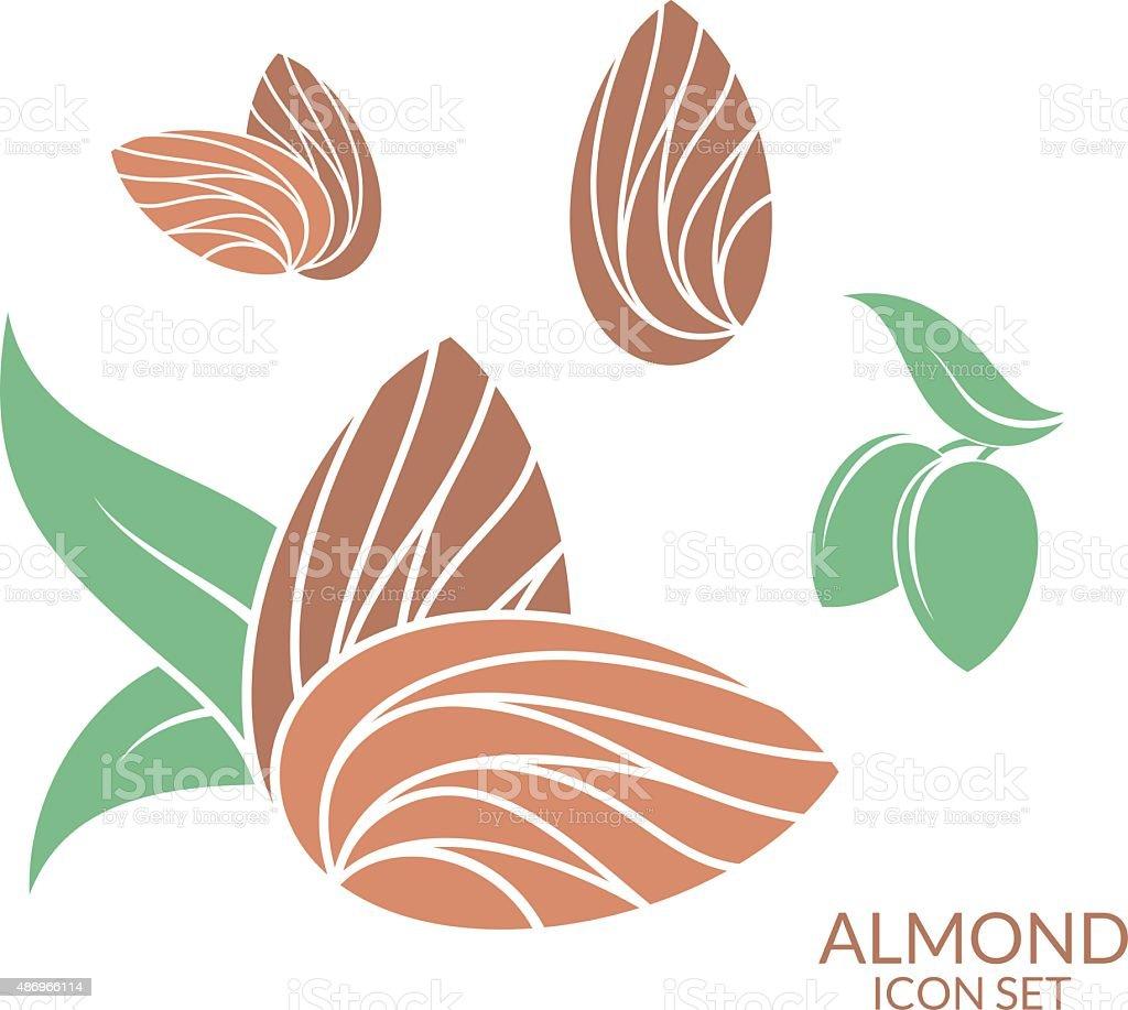 Almond. Icon set. Isolated fruit on white background vector art illustration