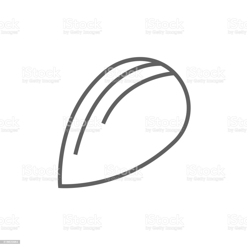 Almond line icon vector art illustration