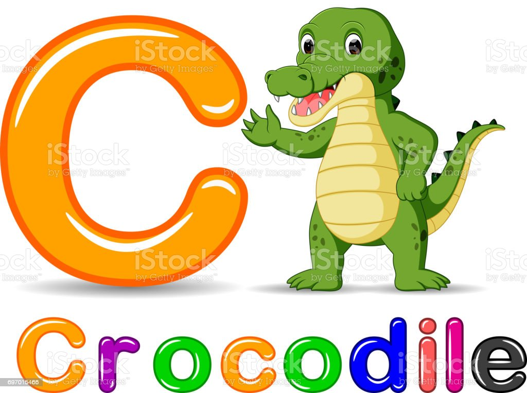 Alphabet C with Crocodile cartoon vector art illustration