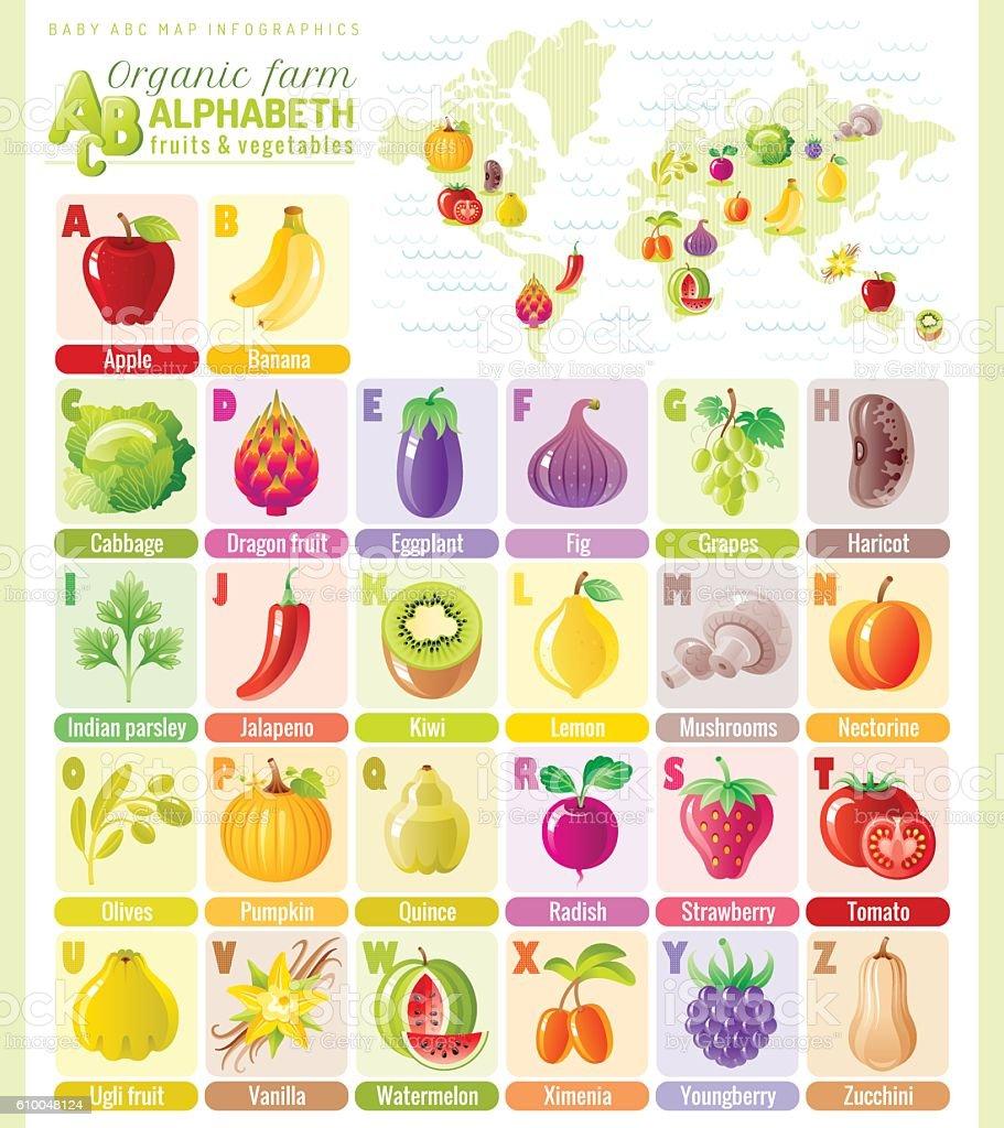 Alphabet food infographics. Fruit, vegetable, berry, spice vector icon set. vector art illustration