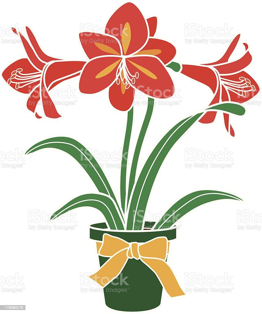 Free Clip Art Plant Amaryllis