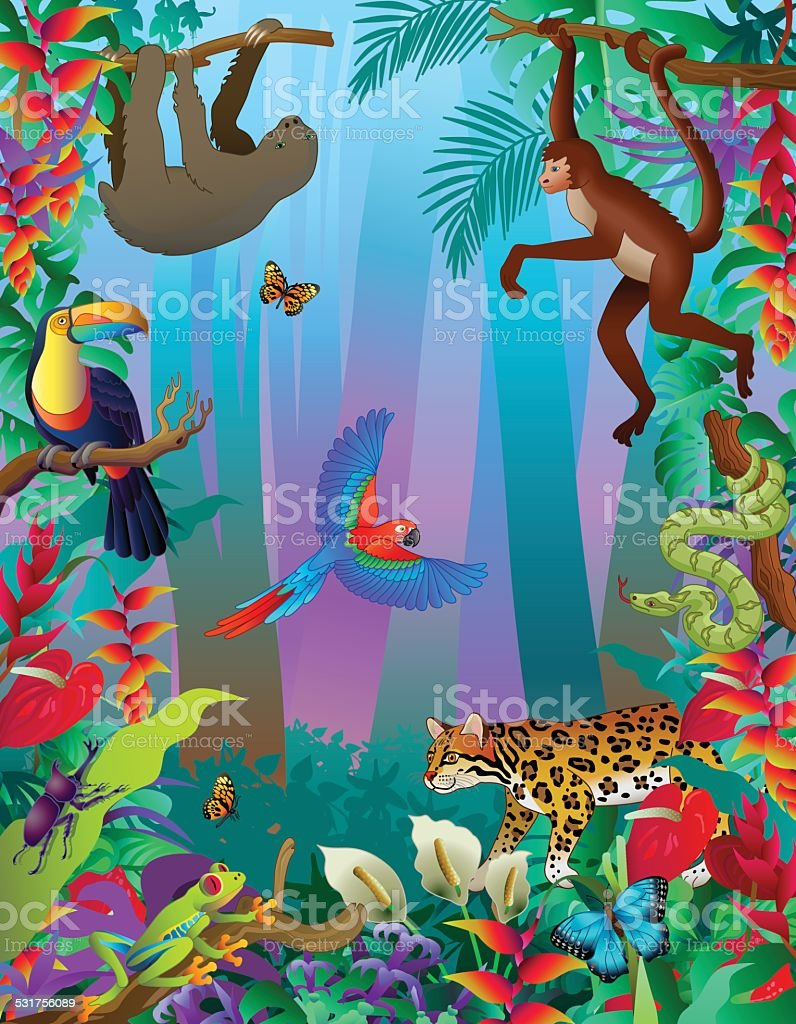 Amazon rainforest animals vertical jungle scene with many creatures vector art illustration