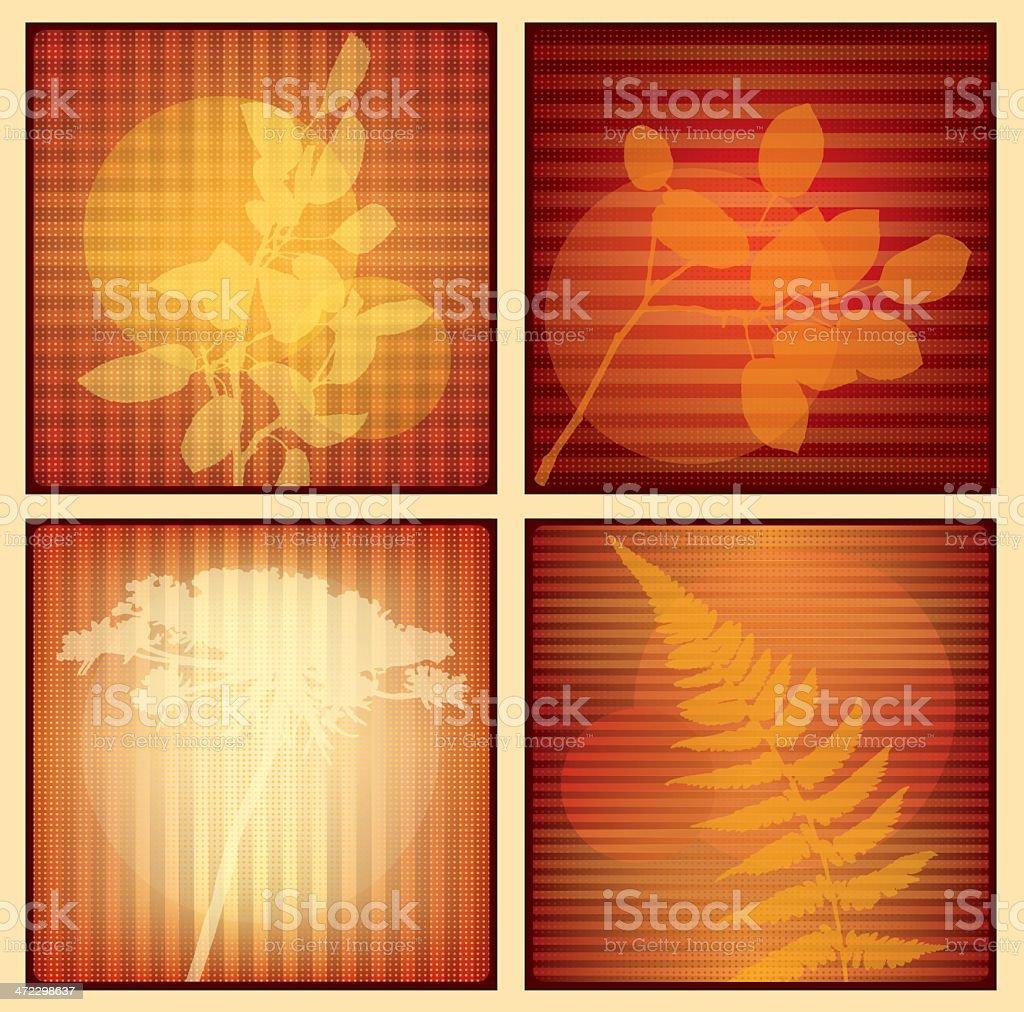 Amber Organics vector art illustration
