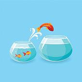 Ambition and Challenge Concept. Goldfish Escape