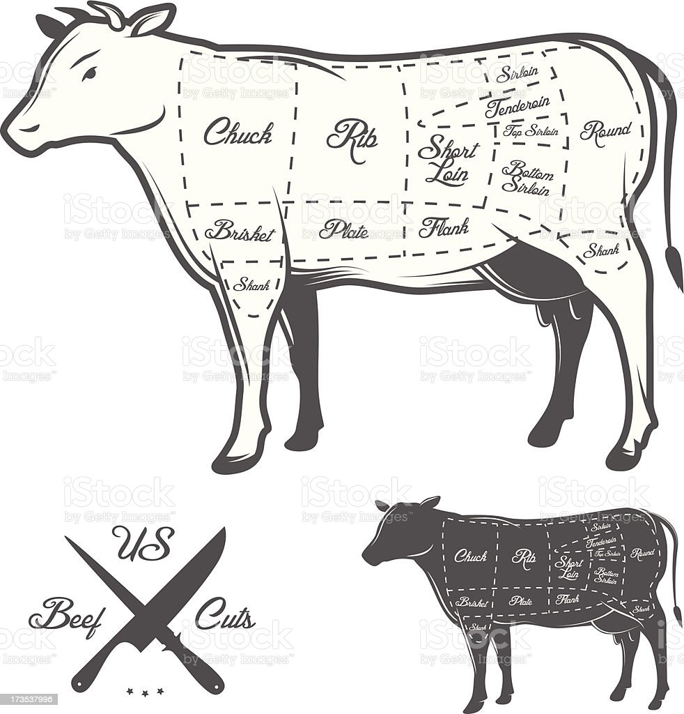 American cuts of beef vector art illustration