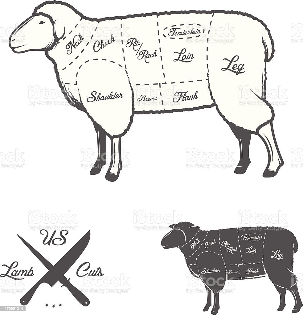 American (US) cuts of lamb or mutton diagram royalty-free stock vector art