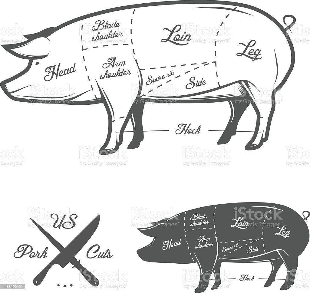 American (US) cuts of pork vector art illustration