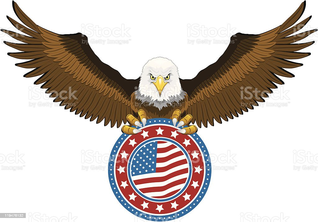 American Eagle Holding US Flag vector art illustration