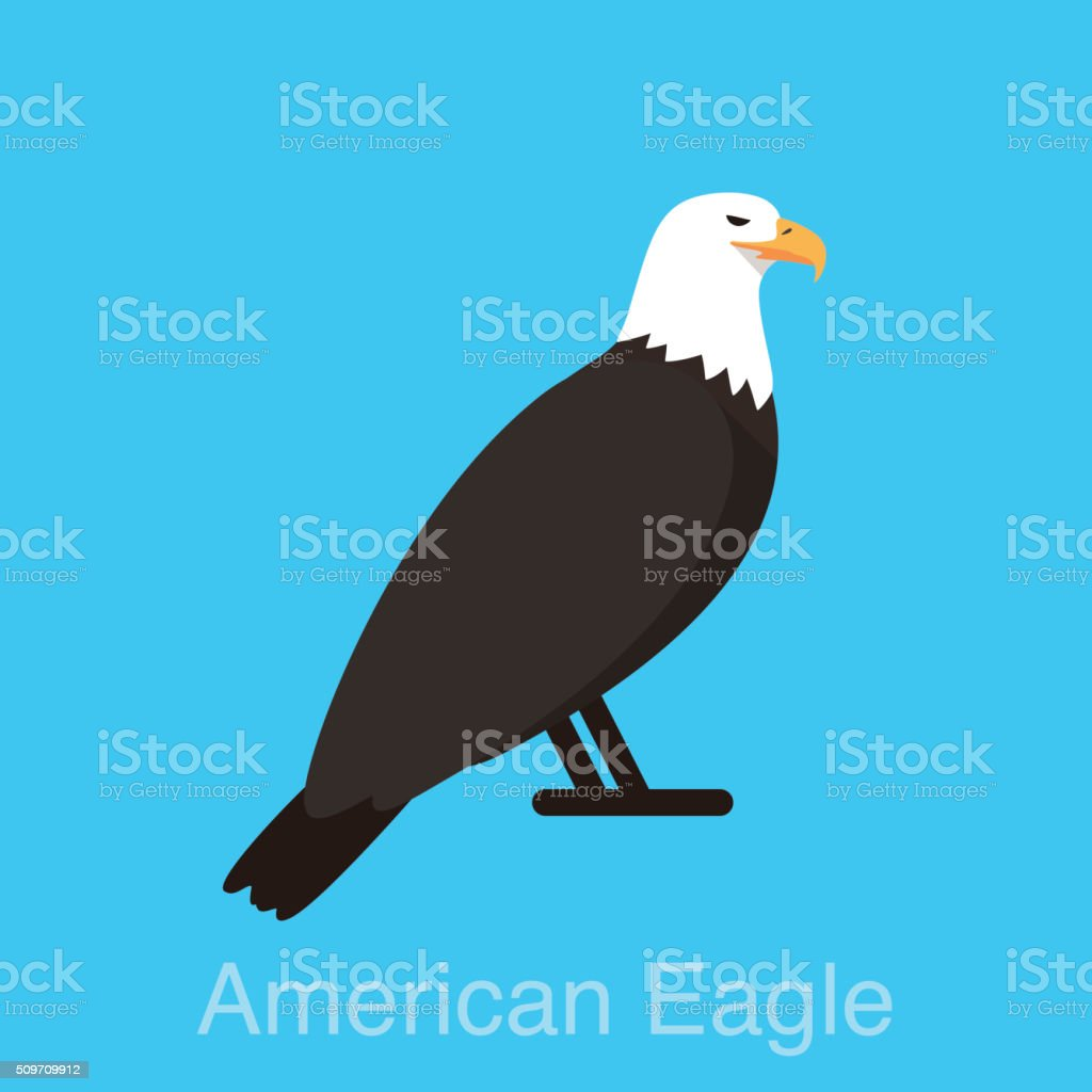 American eagle sitting, watching, vector stock photo