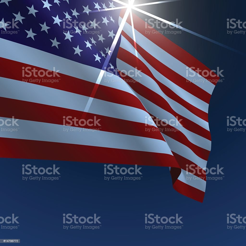 USA American flag vector illustration vector art illustration