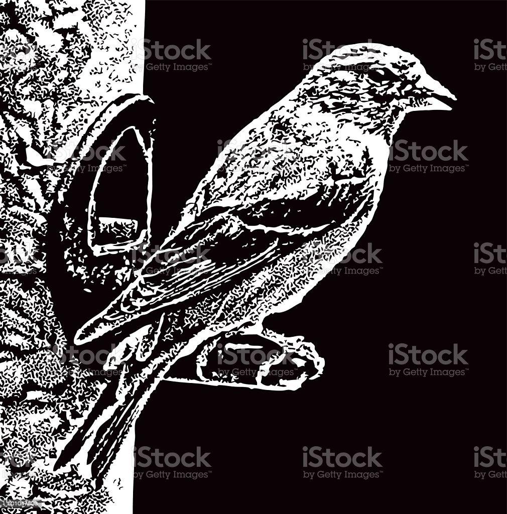 American Goldfinch At Bird Feeder vector art illustration
