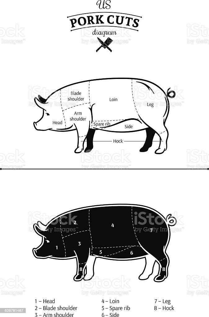 American (US) Pork Cuts Diagram vector art illustration