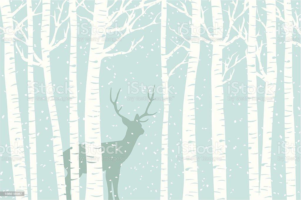 Among the Birch vector art illustration