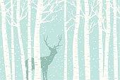 Among the Birch