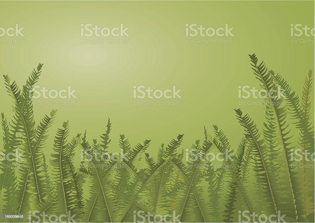 Amongst the ferns royalty-free stock vector art