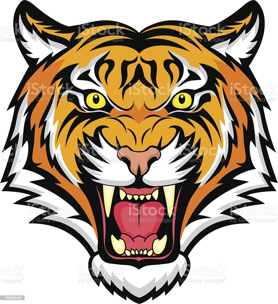 An animated colorful snarling tiger vector art illustration