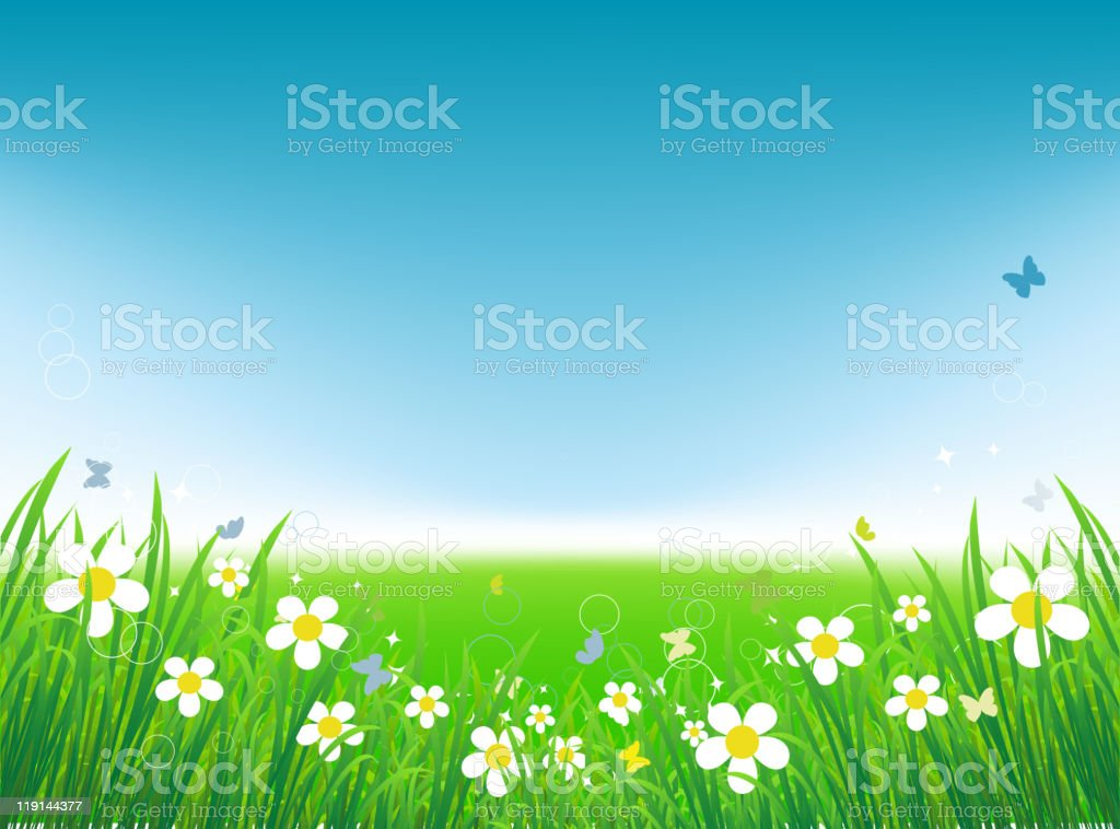 An illustration of a spring meadow royalty-free stock vector art
