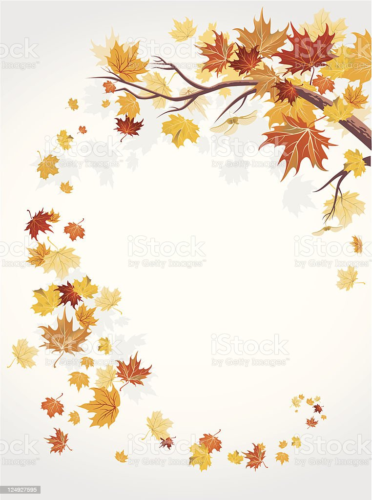 An illustration of Autumn leaves swirling around on white royalty-free stock vector art
