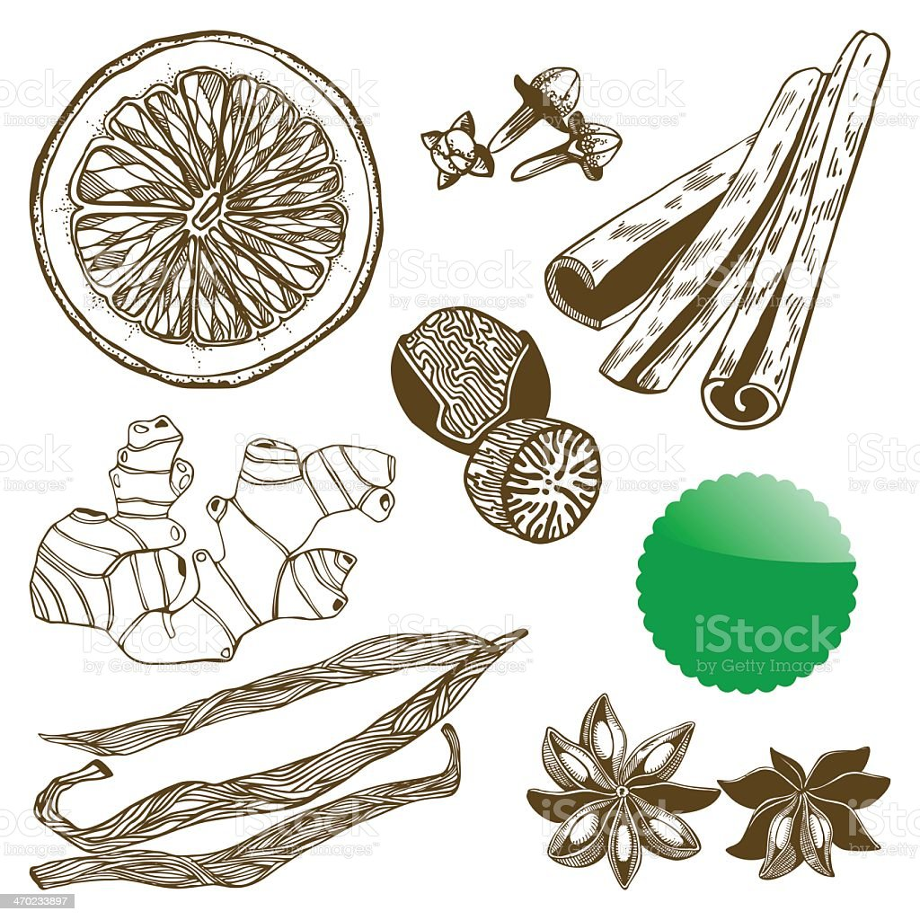 An illustration of hand drawn spices related icons royalty-free stock vector art