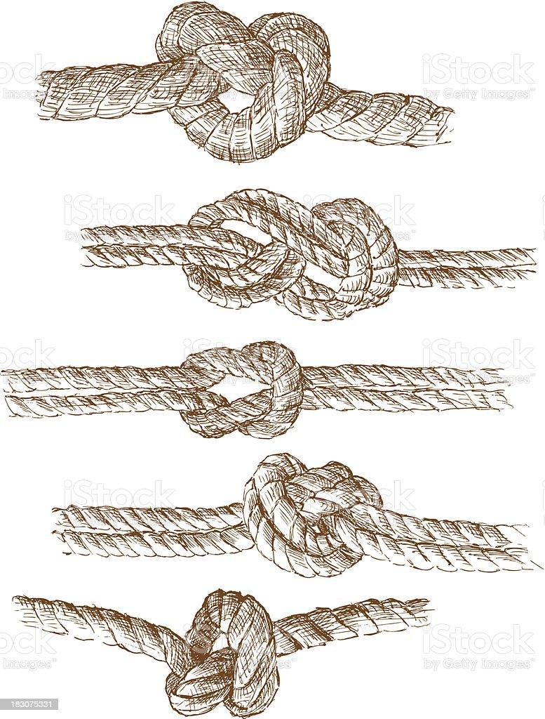 An illustration of various knots being tied vector art illustration