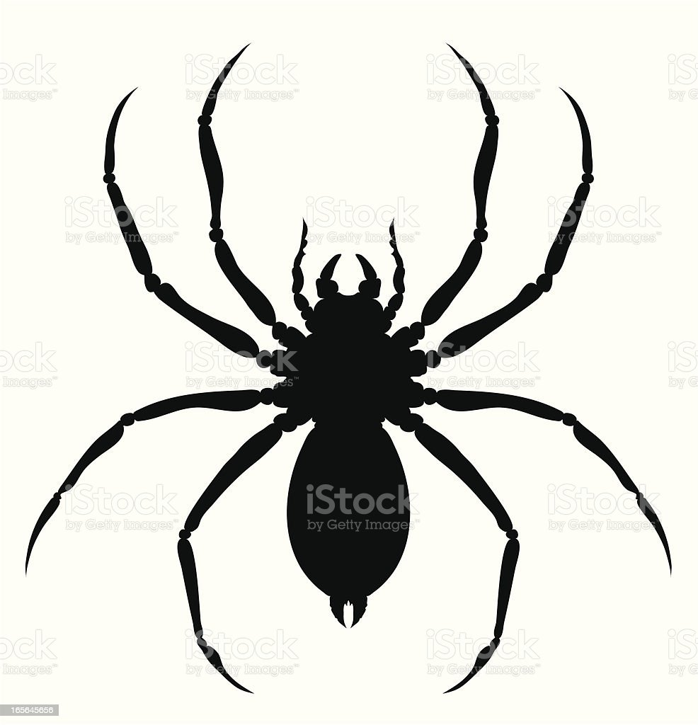 An outline of a giant spider against a white background vector art illustration