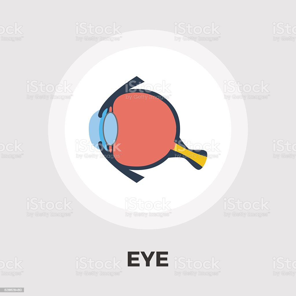 Anatomy eye flat icon vector art illustration