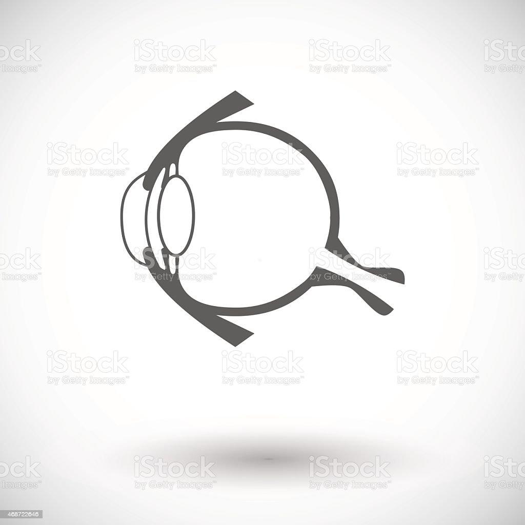 Anatomy eye vector art illustration