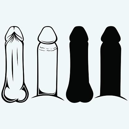 Clipart Penis 49