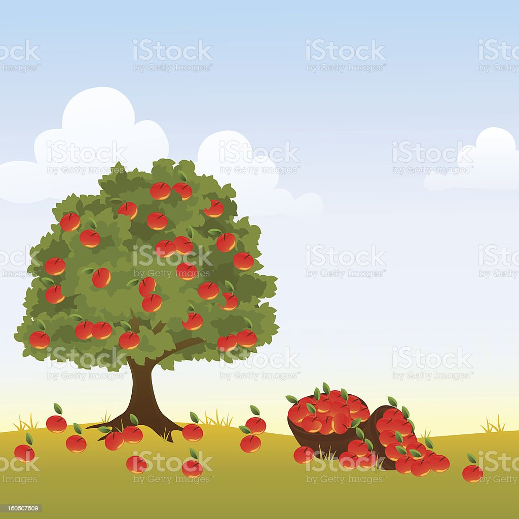 And illustration of an apple tree covered in apples vector art illustration