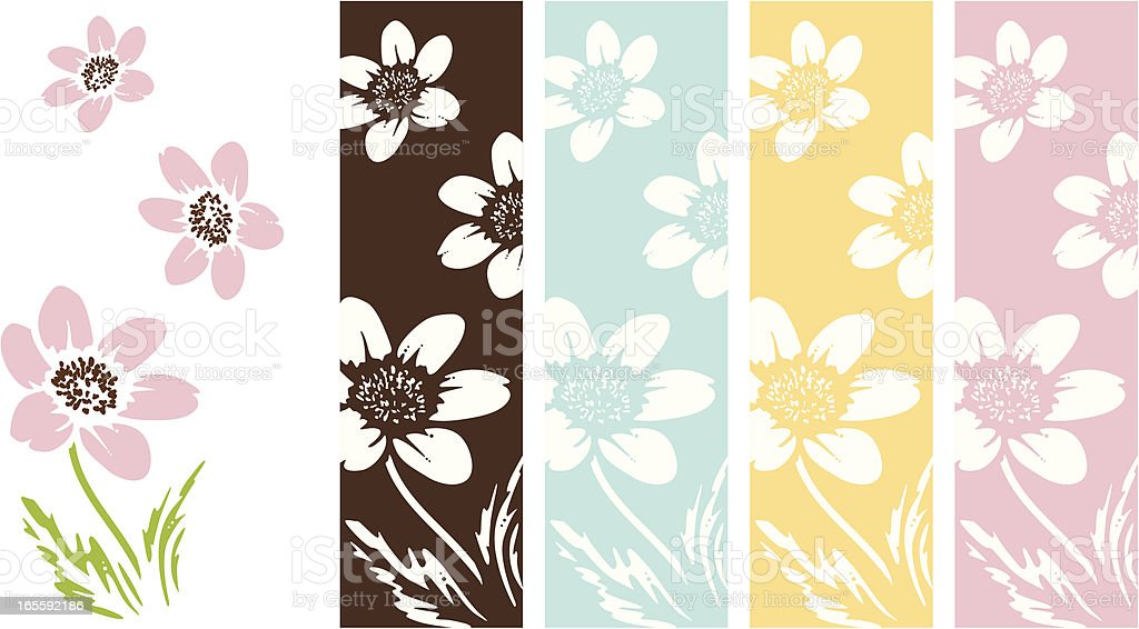 Anemone Flowers royalty-free stock vector art