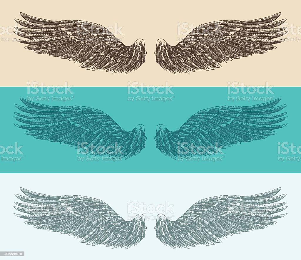 angel wings set illustration, engraved style, hand drawn, sketch vector art illustration