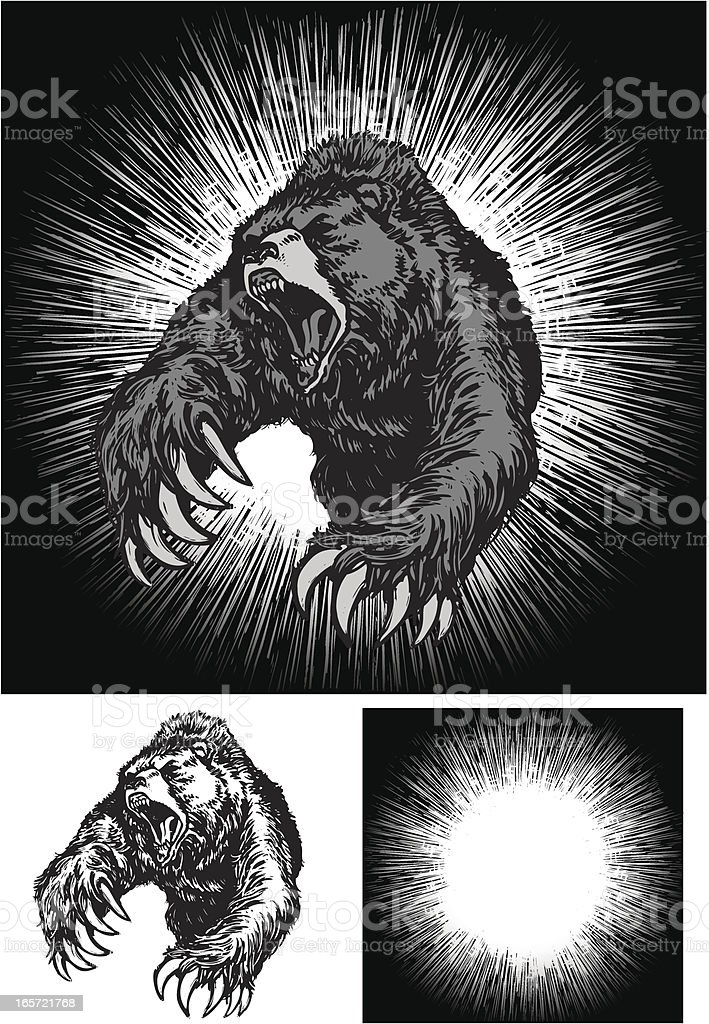 Angry Bear Attack vector art illustration