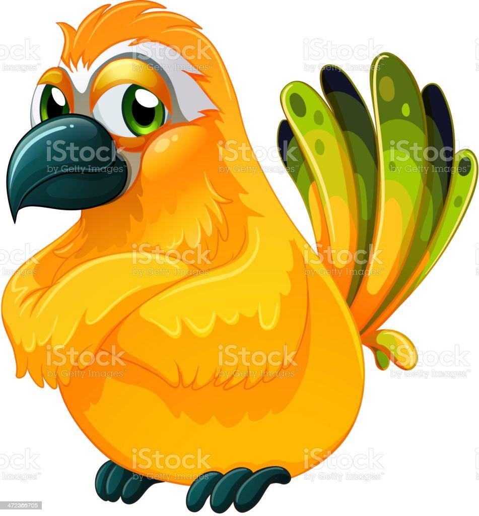 angry bird vector art illustration