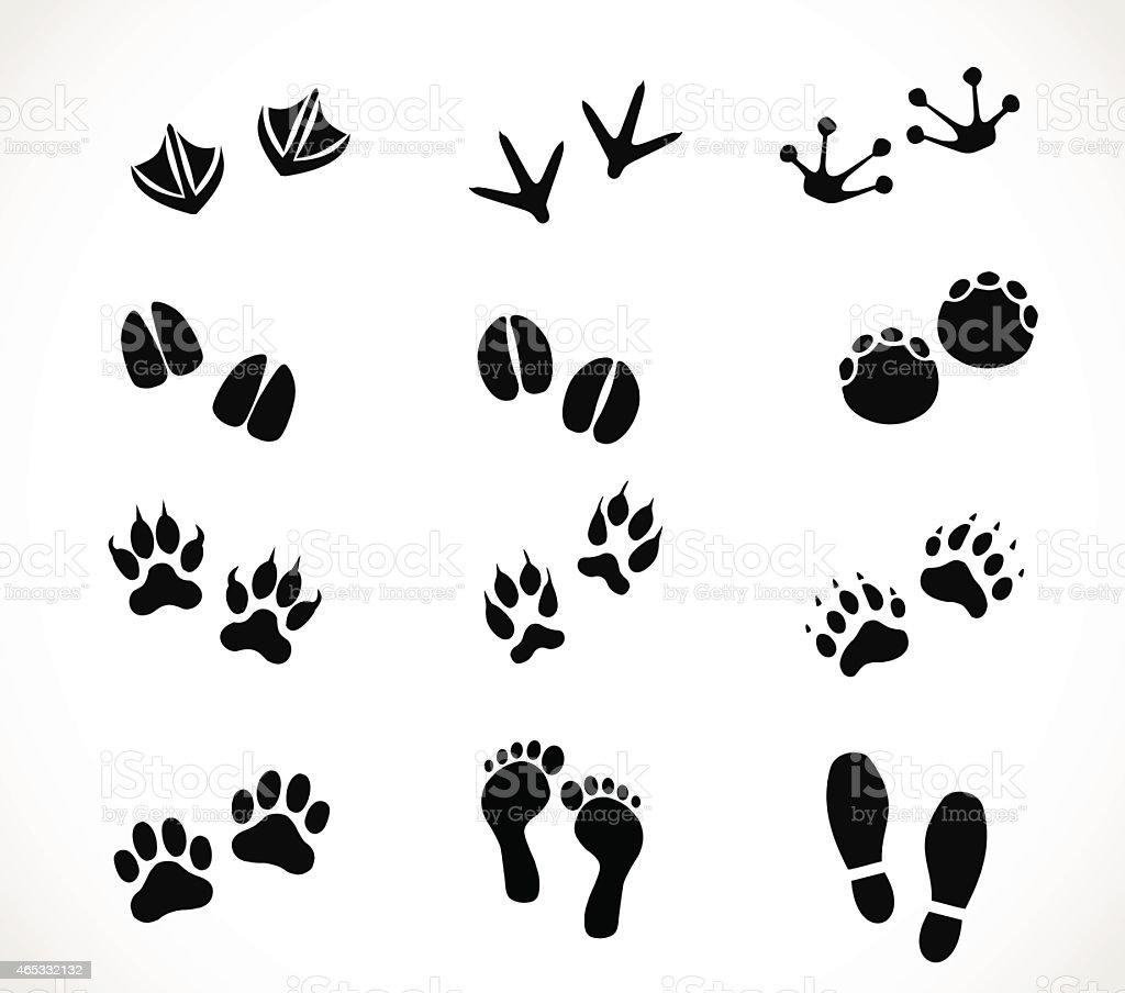 Animal and human paw and footprint set vector vector art illustration