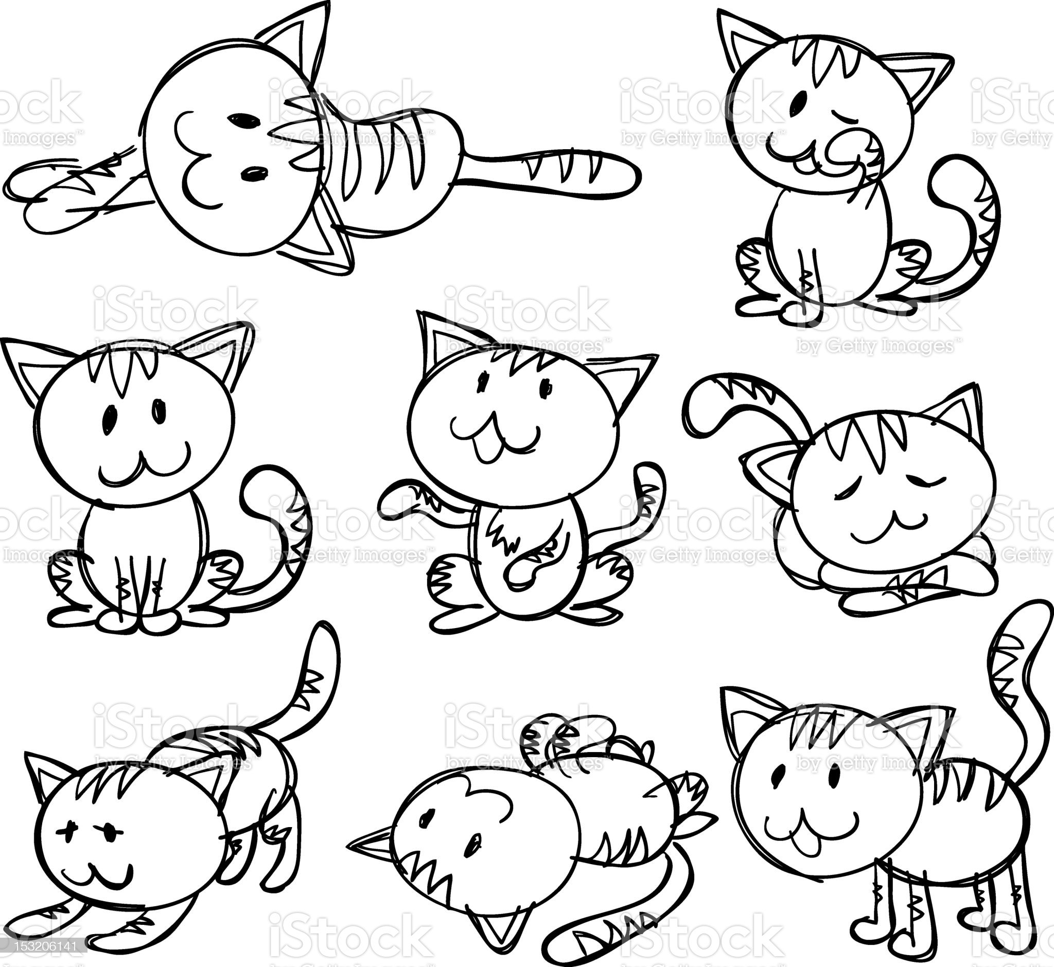 Animal Cat royalty-free stock photo